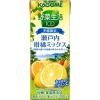【期間・数量限定】 新発売!!!カゴメ野菜生活100 瀬戸内柑橘ミックス 200mLパック×48本