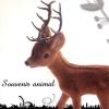 ドイツ Souvenir animal スーベニールアニマル(小鹿)