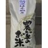 鮭川産はえぬき(10kg)