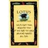 LOTUS(ロータス)のドッグフード