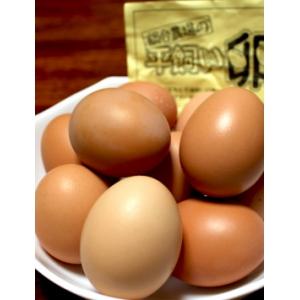 元気印の平飼い卵/30個入
