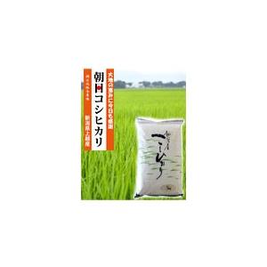 低農薬米!朝日コシヒカリ/5�