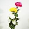 仏花セットE(三色の大輪の菊)