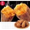 安納芋(安納紅)5kg (全国一律送料込)