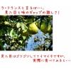 山形県産【ラ・フランス】小玉2kg