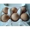 平飼卵6個入り